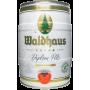 Buy - Waldhaus Diplom Pils 4,9° - 5L Keg - KEGS 5L
